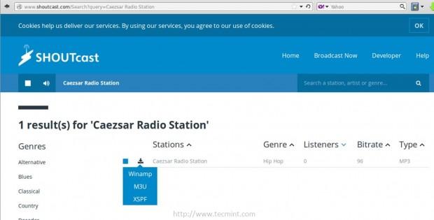 Shoutcast Station Listing