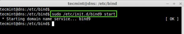Start DNS Server in Ubuntu