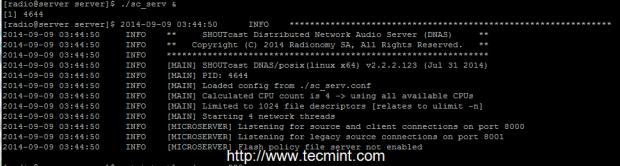 Start Shoutcast Server