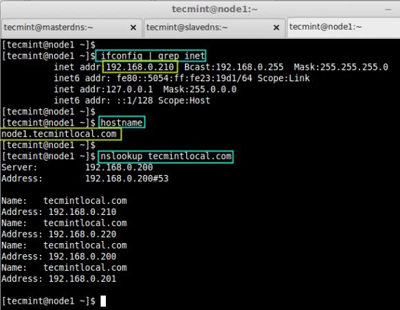 Verify DNS Entry