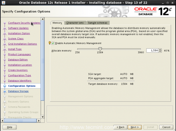 Oracle Configuration Options