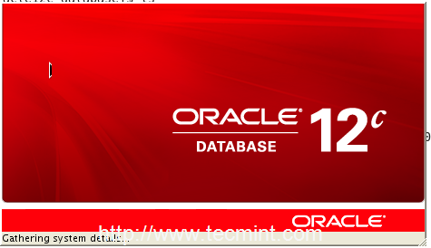 Oracle 12c Installer in RHEL
