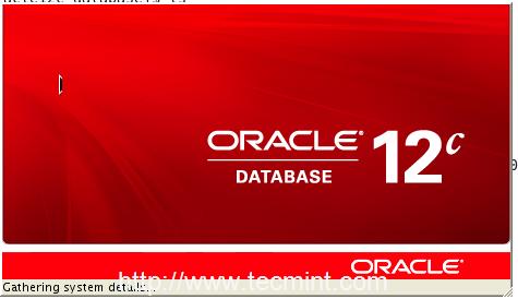 Oracle 12c Installer in RHEL