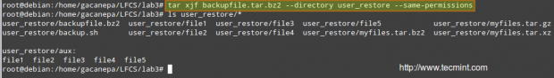 Restore Files from tar Archive