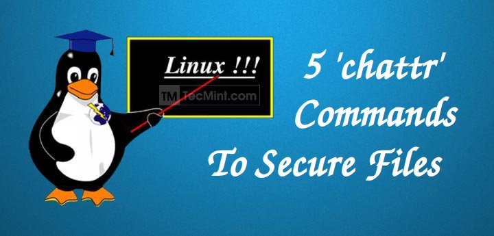 chattr ubuntu 14.04