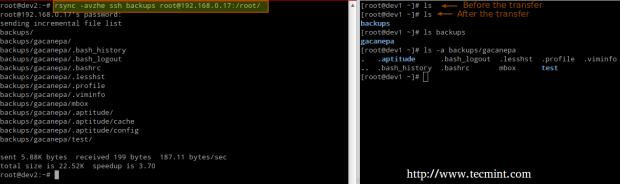 rsync Synchronize Remote Files