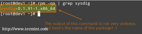 Check sysdig Package