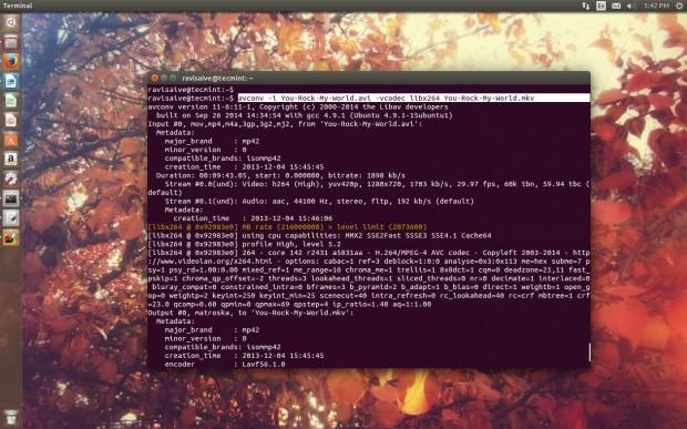 Convert Avi to Mkv Format in Linux