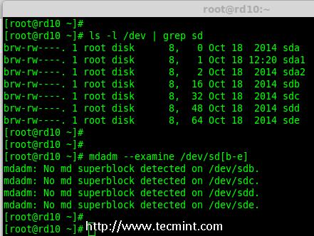 Verify 4 Added Disks