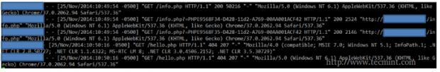Apache Access Log
