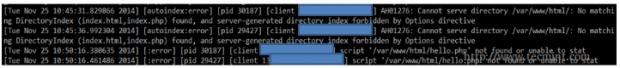 Apache Error Log