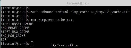 Backup DNS Cache