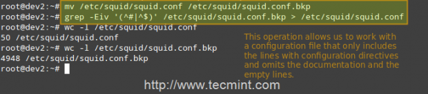 Backup Squid Configuration File