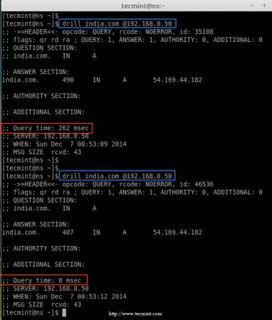 Check DNS Cache Locally