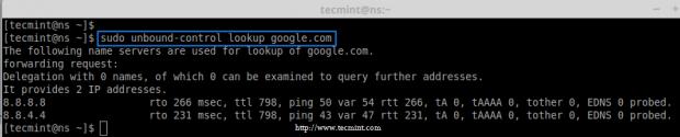 Check DNS Lookup