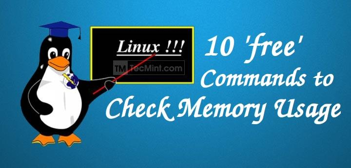 Check Memory Usage in Linux