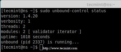 Check Unbound DNS Status