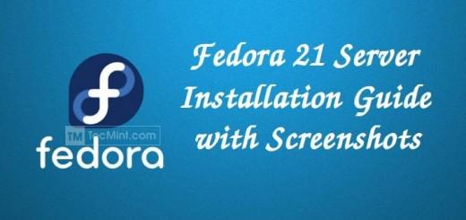 Fedora 21 Server Installation