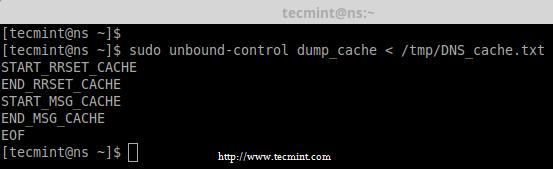 Restore DNS Cache