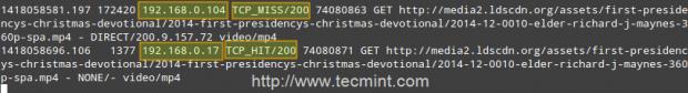 Squid HTTP Codes