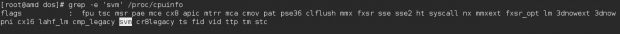 Check CPU Virtualization Support