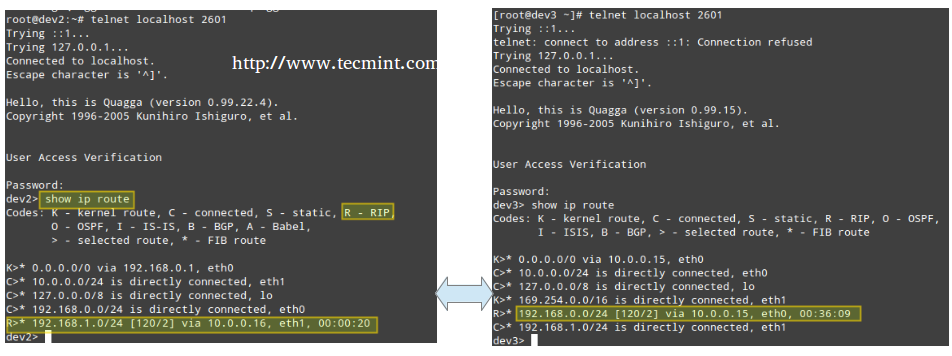 enable ip routing: