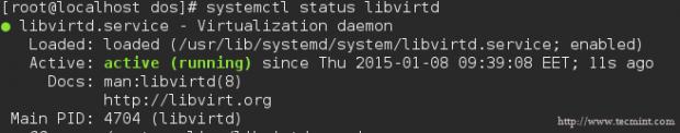 Check Libvirtd Status