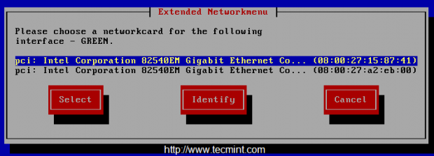 Enable Network Interface