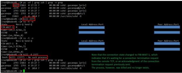 Linux Kill Active Process