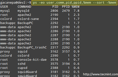 Monitor Linux Processes by Memory Usage
