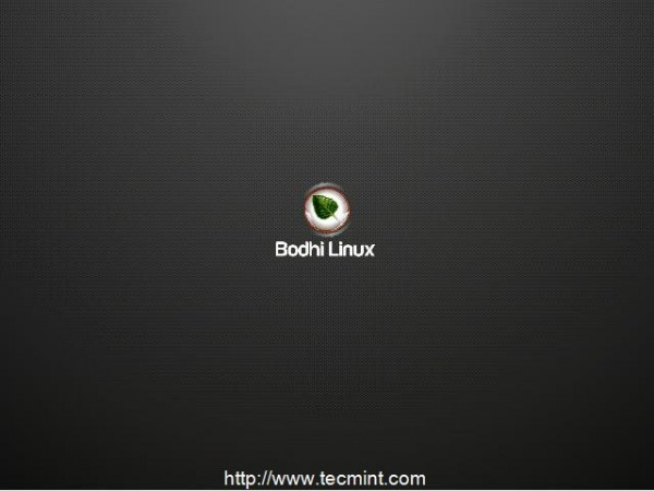 Booting Bodhi Linux