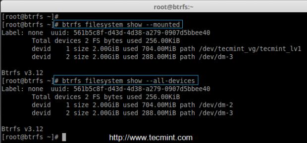 List Btrfs Filesystems