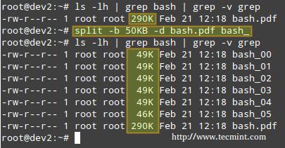 Split Files in Linux