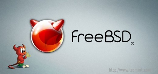 FreeBSD 10.1 Installation Guide