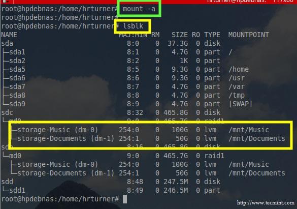 Check LVM Filesystem Mount Status