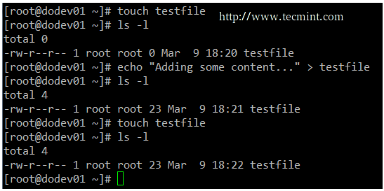 touch command example