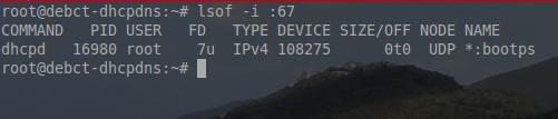 Check DHCP Listening Port