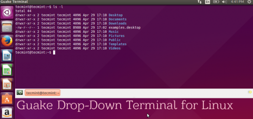 Terminator 0 97 - A Terminal Emulator to Manage Multiple Terminal