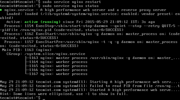 Restart Nginx Server