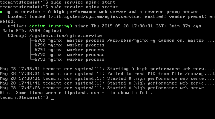 Start Nginx Server