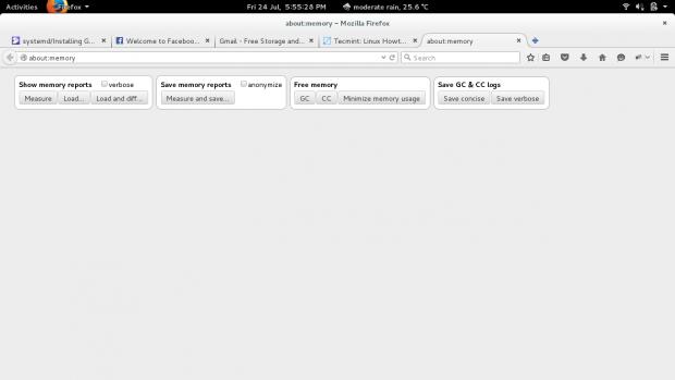Check Firefox Memory Usage