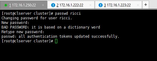 Set Ricci Password