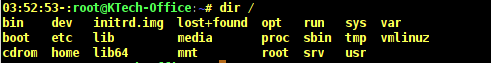 dir Command Output