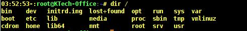 dir Command Output