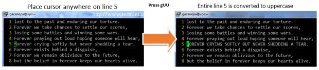 Change String to Uppercase in Vim Editor