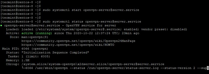 Check OpenVPN Server Status