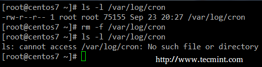 Delete Cron Logs