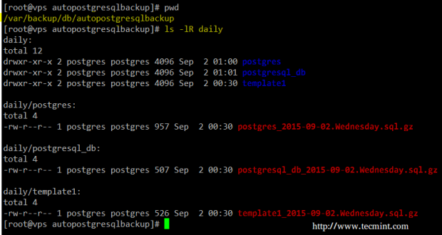 PostgreSQL Daily Database Backup