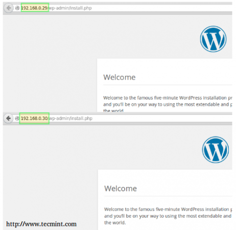 Ansible WordPress Installation