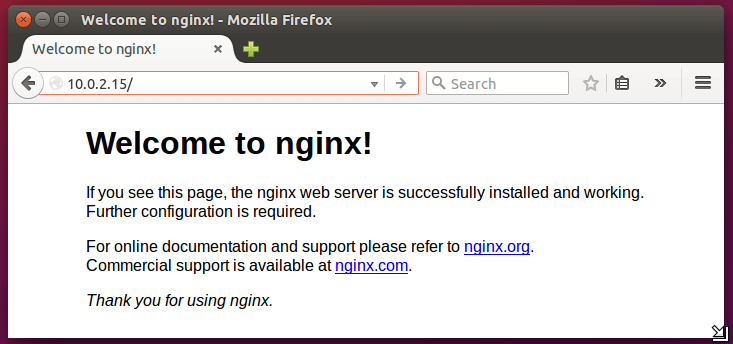 Confirm Nginx Installation